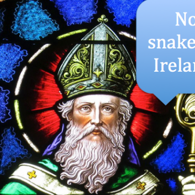 Snakes in Ireland and Other Thoughts on Composition - Charlotte Mason Educational Retreat